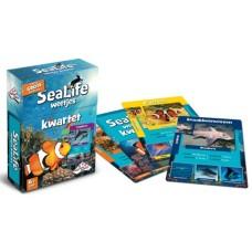 Sealife Quartet game Dutch - Identity Games