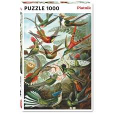 Puzzle Humming birds - H,1000 pcs Piatnik.552847