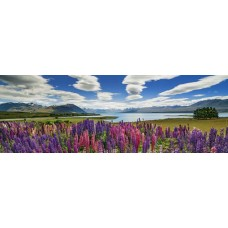 Puzzle Lake Tekapo 1000 Panor.Heye 29902