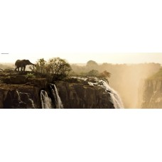 Puzzle Elephant 1000 Panorama Heye 29287 * delivery time unknown *