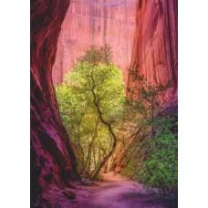 Puzzle Singing Canyon 1000 Heye 29944 NEW