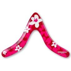 Recreation boomerangs